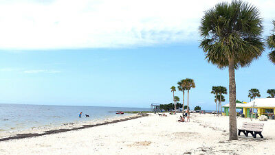 1-14 Acre Lot in Florida Close to Gulf Beaches -Fishing and River