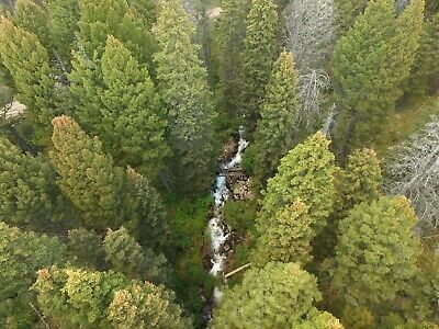 Montana Gold Mining Claim Prime South Meadow Creek Placer Mine 20 acres