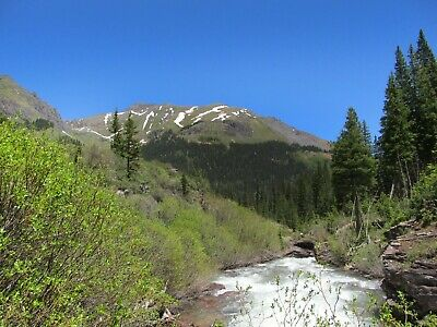 Colorado Gold Mine Prime Mining on Mineral Creek 20 Acre Placer Claim Panning