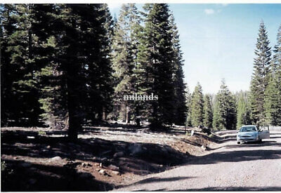 NO CAL-BEAUTIFUL  1 AC MOUNTAIN LOT-