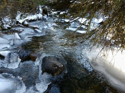GOLD MINE Historic Sheridan MT Buttermilk Jim Placer 20 Acre Gold Mining Claim