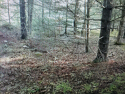 New York 5-44 acre vacant buidable lot in barryville ny sulivan County
