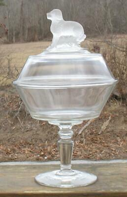 EAPG CLEAR with FROST STANDING  SAINT BERNARD  COVERED FTD- COMPOTE
