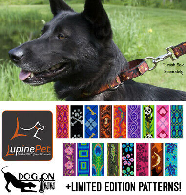 Lupine Combo Dog Training Collar- Martingale Limited Slip Choker-  M-XL 1 wide