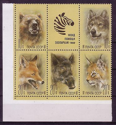 Russia 1988- Zoo Relief Fund- Scott  B145a- Block of 5 - label- MNH VF