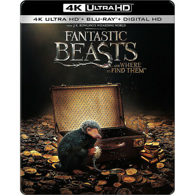 Fantastic Beasts and Where to Find Them Steelbook 2017 4K Blu-ray Digital