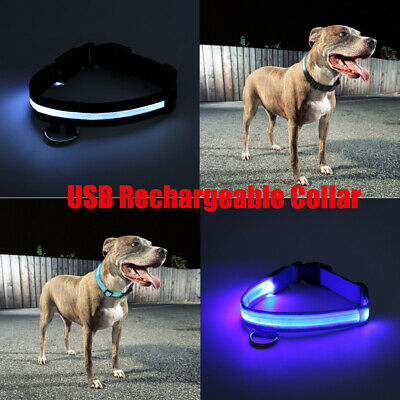 RECHARGEABLE USB LED Dog Pet Light Up Safety Collar Night Glow Adjustable Bright