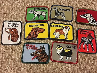 Vintage square dog breed patches sew on you pick breed