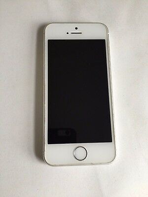 Apple iPhone 5s - 16GB - Silver Factory Unlocked GSM 4G LTE