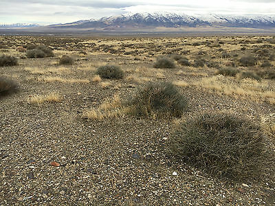 Rare gold claim in Rye Patch Nevada - Section 08