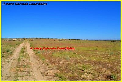 5-0 ACRE PROPERTY WITH ROAD ACCESS FREMONT PEAK OHV AREA MOJAVE DESERT CALIF