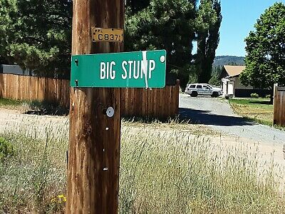 SISKIYOU COUNTY CALIFORNIA LOT - OREGON BORDERS YOUR BACK YARD  NO RESERVE