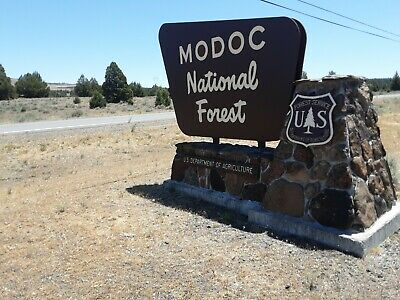 Modoc County CALIFORNIA -TREES TREES TREES Owner financing Bidding begins  6488