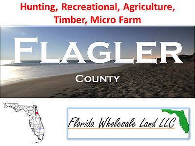 5 Flagler County Properties For Sale Buy Wholesale Land Now