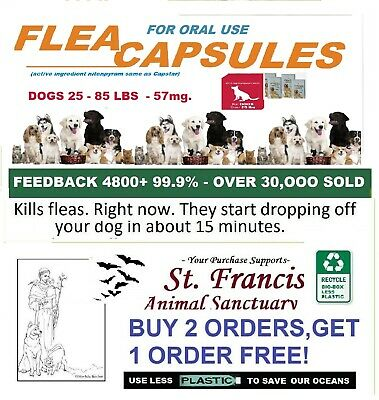 16 LR Equal To Capstar Same Active Ingredient Flea Treatment Remedy GET 2 FREE