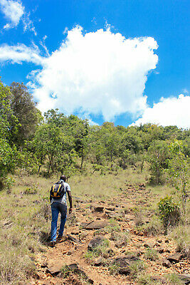 Moderate Hiking and Trekking in Kenya 9 Days Price for 2 Travellers