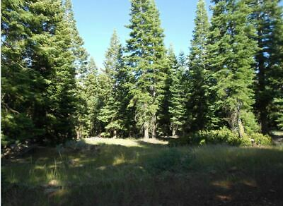 SALE California -9 Acre Treed Mountain Property Only 110Mo  0 Interest
