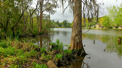 3-14 acres on Dog River Mobile Alabama- Deep water pier or dock allowed