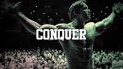 Arnold Schwarzenegger Conquer Muscle Bodybuilding Mini Poster 13x19