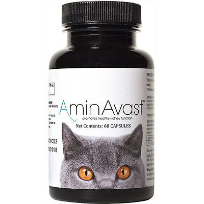 AminAvast Kidney Support for Cats 60 Capsules