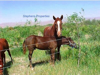 5 ACRES WEST TEXAS LAND - GREAT FOR HORSES - HUNTING - HOMESITE-82 MO  TERMS