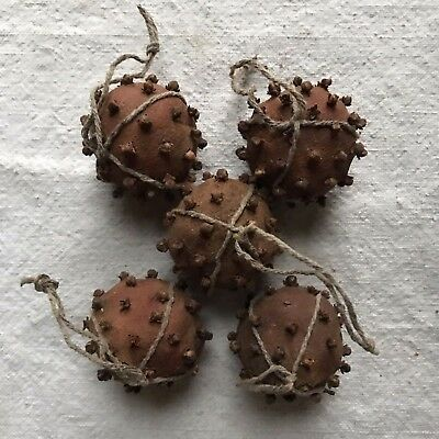 Set Of 5 Clove Clementine Hanging Ornaments Primitive Christmas Natural Handmade