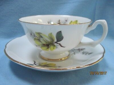 Lovely Vintage Royal Grafton England Fine Bone China Cup - Saucer