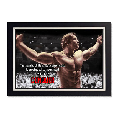 Arnold Schwarzenegger Body Building Conquer Reproduction Poster 11x17in 24x36in