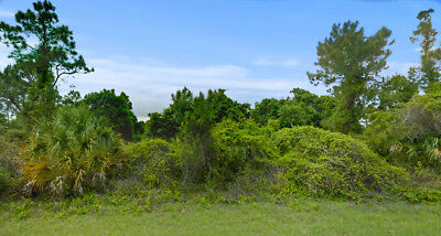 0-26 Acre Residential lot in Sarasota County No Reserve Cash Sale North Port