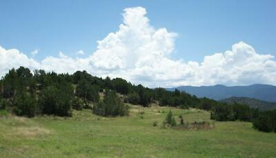 VACANT LAND in FLORIDA-COLO ACRES FREMONT COUNTY CO - Bankruptcy Estate Sale