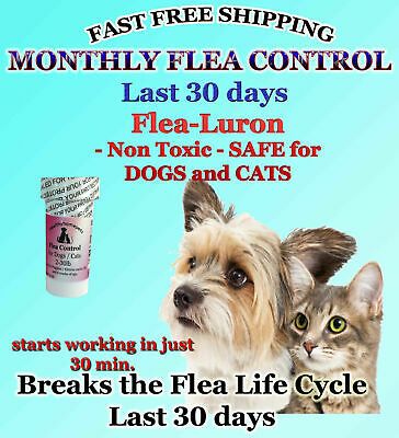 1 Year Supply MONTHLY Flea Control For DOGS  CATS 2-30Lbs-165Mg 12 Capsules NEW
