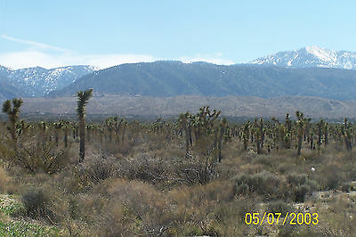 Vacant Lot 5 Acres Land Llano Los Angeles County Gated Huge Views 3064-23