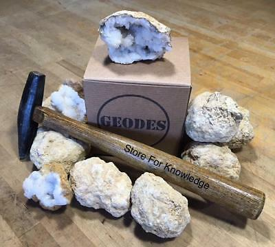 10 Break Crack Open Your Own Whole Moroccan Geodes WGift Box - 2 Crystal Rocks