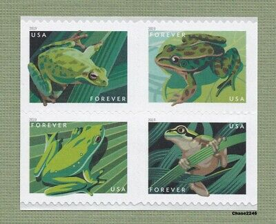 NEW 2019 Frogs Booklet Block of 4 2019 Mint NH - In Stock