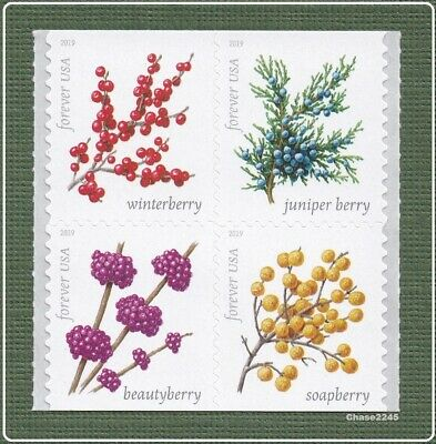 NEW 2019 Winter Berries Booklet Block of 4 2019 Mint NH - Ships after 917