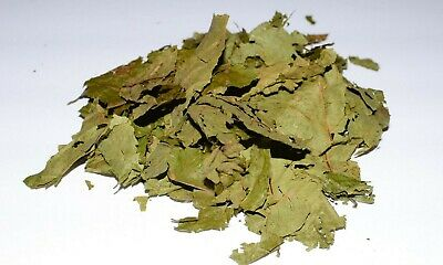 Dried Caapi Leaves 1 oz - Banisteriopsis Caapi Known as ayahuasca