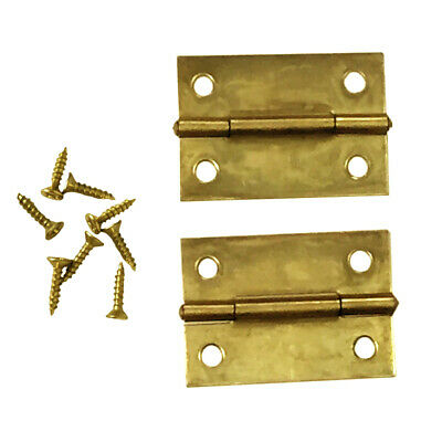 2 PC Metal Brass Plated Surface Utility Hinges 2 W Screws Door Storage Cabinet
