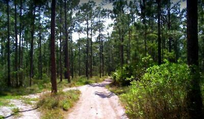 5 - AC by beautiful River Ranch Close to Lake FrostproofFLPre-Foreclosure