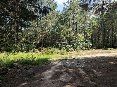 Land for Sale - East Texas - Near Neches TX - Clear Deed