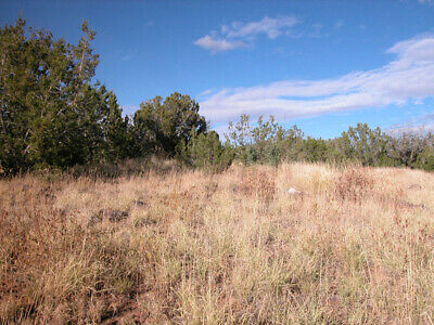 1-14 - Acre with Beautiful Desert views 3 Hours From Phoenix AZ