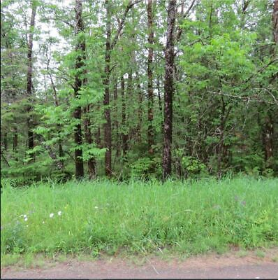 23 Acres of Beautiful Northern Maine Property