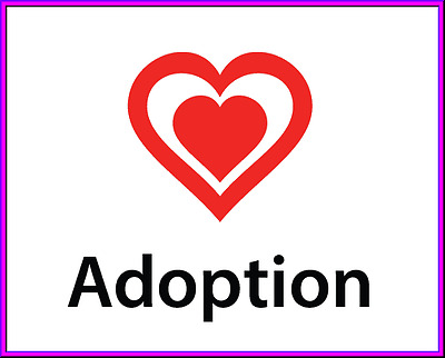 CanineAdoptions-com  dogs pets adoption premium domain name url for sale