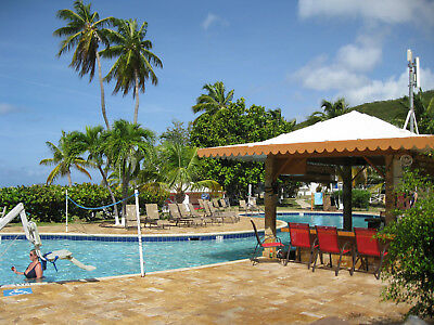 Wyndham Captain Bluebeards Beach Club Resort -  Deed and 126000 converted Pts-