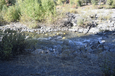 🚩BAKER COUNTY OREGON 🚩 GOLD MINING CLAIM ⚜️PLACER⚜️ 20 AC-