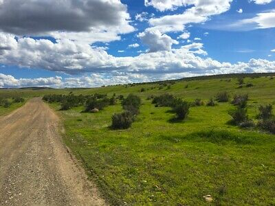 RARE 40 ACRE NEVADA RANCH EZ ACCESSPAVED ROADSURVEYED CASH SALE NO RESERVE