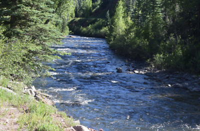 💰20 Acre Gold Mining Claim ✅Placer✅ 🔷Dolores River🔷Dolores County Colorado💰