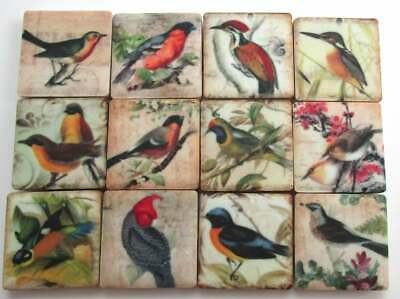 Ceramic Mosaic Tiles - 12 Piece Mixed Set - Vintage Bird Art Designs Mosaic Tile