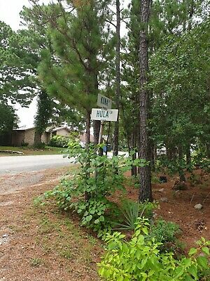 TAHITIAN VILLAGE BASTROP TEXAS DEVEL RESIDENTIAL AREA STRAIGHT SALE NO RESERVE