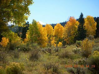 Forbes Park Costilla County Colorado 2-06 Acres in private gated community