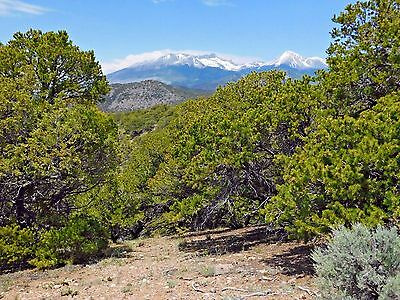 HEAVILY TREED Mountain Lot in Southern Colorado - 5-02 Acres